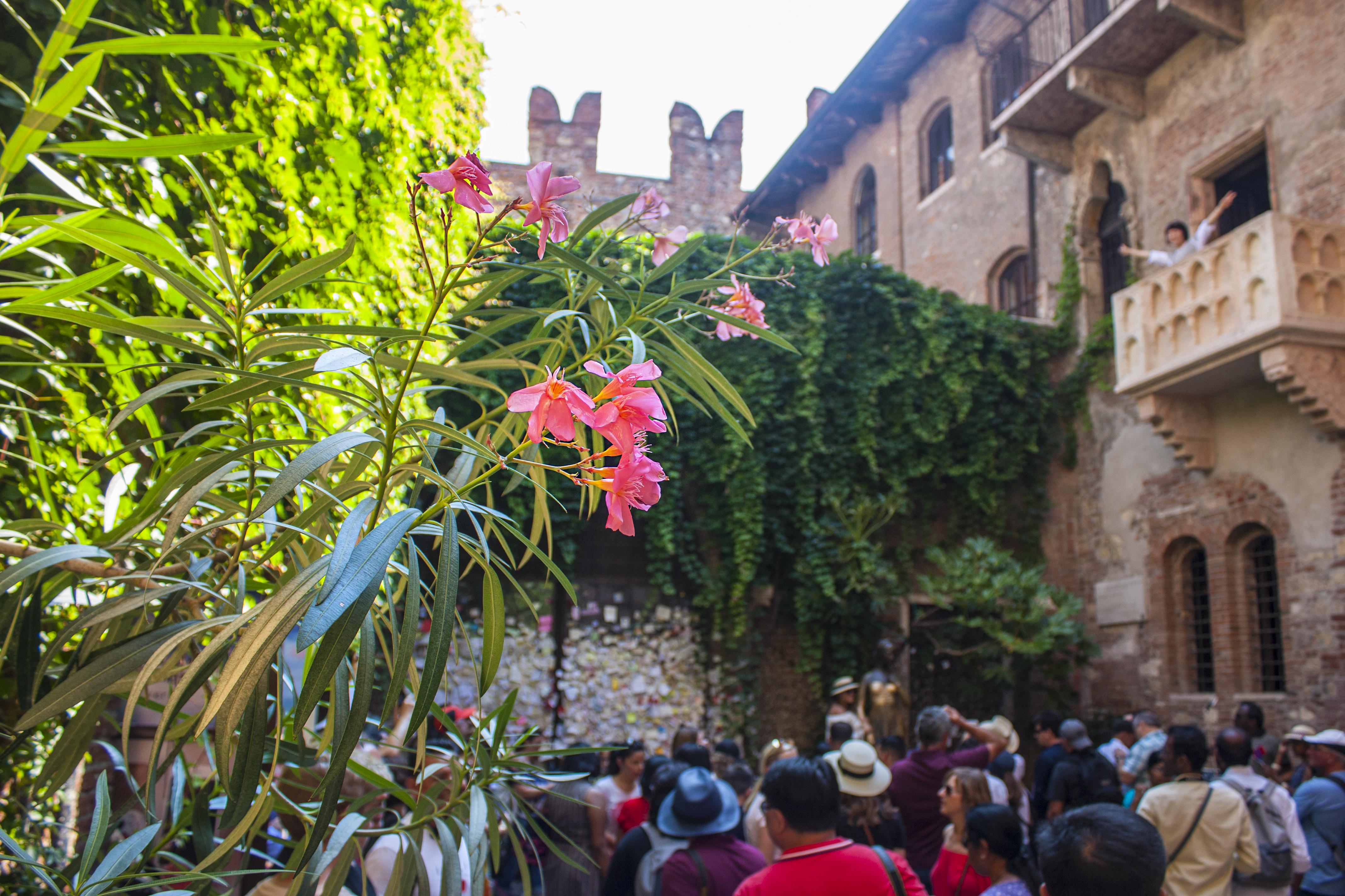 Дом Джульетты в Вероне. Фото: SHUTTERSTOCK