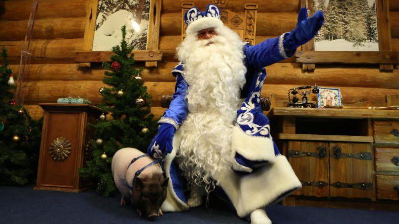 Дед морозу привезли символ нового года - поросенка На фото: Мороз Никитич и свинка Маруся. Алексей Орлов,