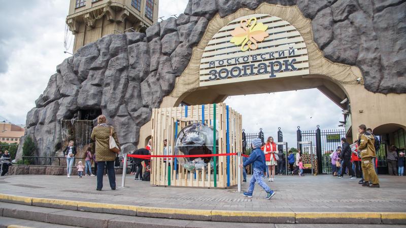 Московский зоопарк. Михаил Подобед, «Вечерняя Москва»