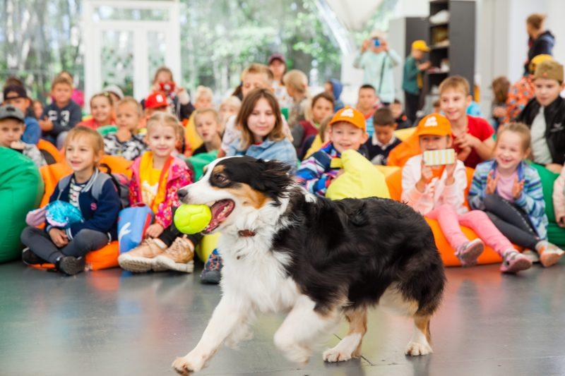О секретах «собачьей» работы узнали участники клуба «Лето Побед»