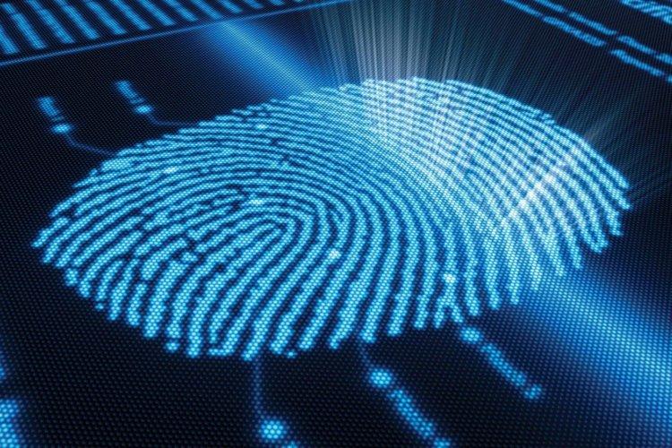 Цель авторов проведенного исследования — внедрить полученные результаты в практическую медицину и криминалистику / https://pixabay.com/ru/