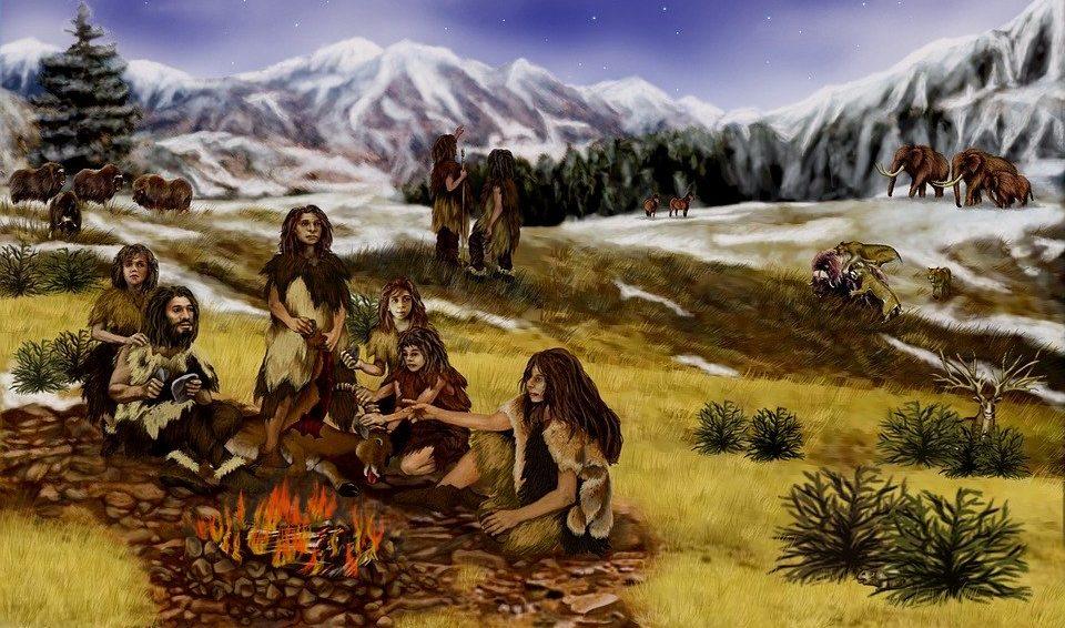 Генетики из Стэнфордского университета, изучив следы столкновений неандертальцев и Homo sapiens / https://pixabay.com/ru/