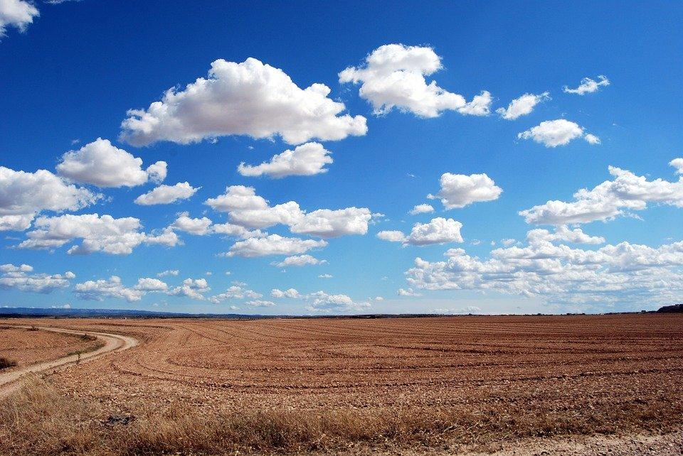 Созданная программа способна анализировать данные на площади от 100 до 1 миллиона гектаров, pixabay.com