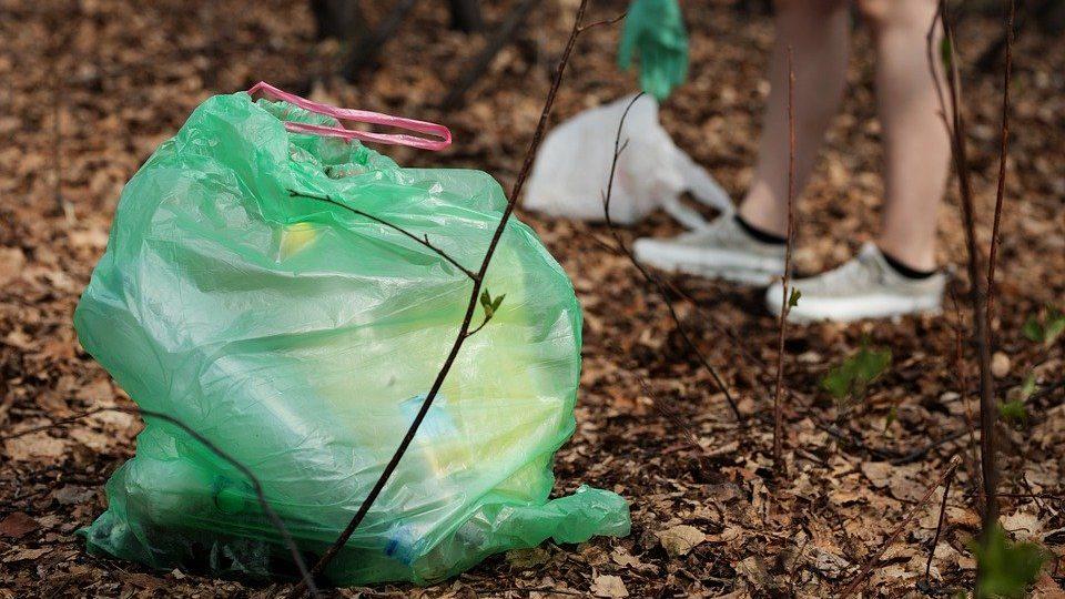 Он может стать альтернативой традиционному пластику, pixabay.com