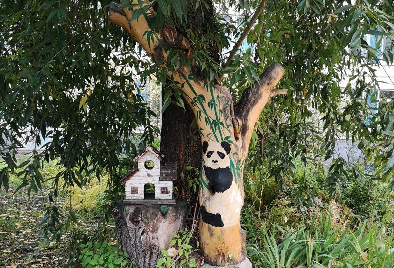 Бамбук. Цветок бамбука прогоняет панду.
